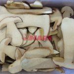Funghi Porcini Fette Gran Natura 1kg  surg.