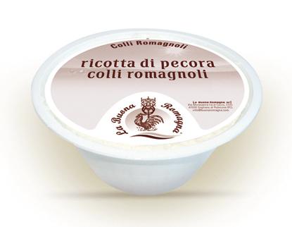 Ricotta di Pecora dei Colli Romagnoli (confezione da 1,60 kg)