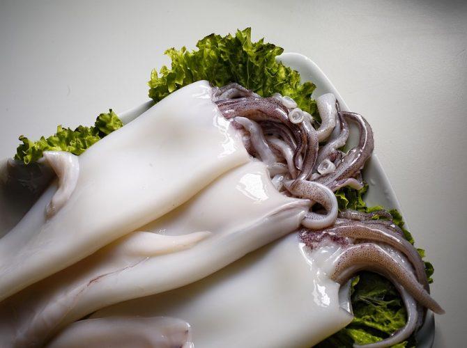 Calamari Sporchi cong.